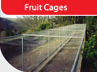 Fruit cage photo